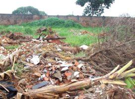 Em Bonito, terreno sujo pode gerar multa de quase R$ 6 mil